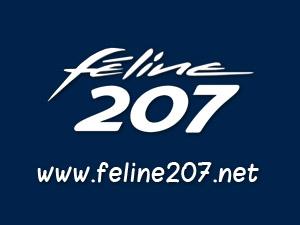 Windstop et Veronique pour la Peugeot 207 CC